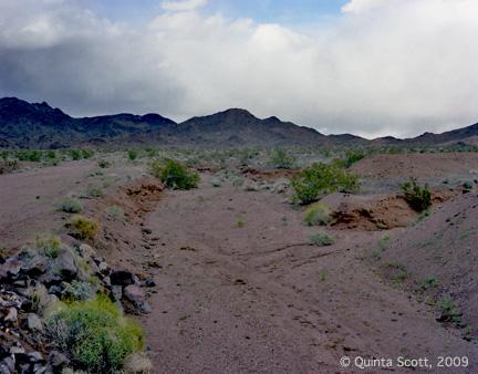 Dry River, Mojave Desert