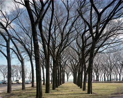 Grant Park, at Jackson and Lake Shore Drive, Chicago