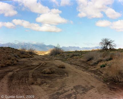 Dry Wash, Mojave Desert